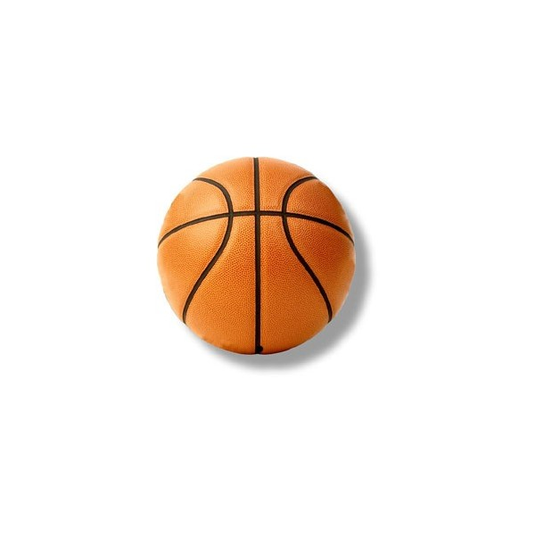 Lifetime basketball Officiele basketbal bal, basketbal ...